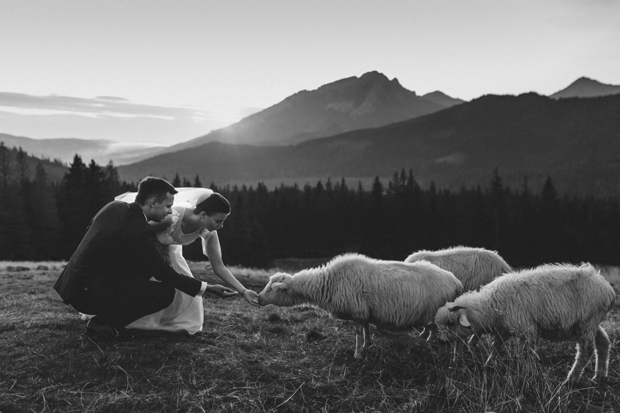 wedding session in Tatra Mountains
